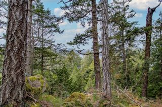 Photo 3: 8803 Canal Rd in : GI Pender Island Land for sale (Gulf Islands)  : MLS®# 874547