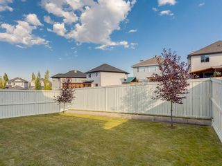 Photo 40: 51 KINCORA Park NW in Calgary: Kincora Detached for sale : MLS®# A1027071