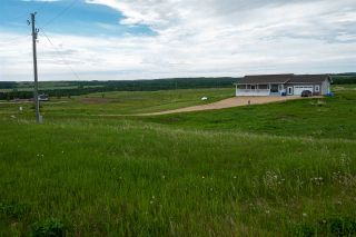Photo 33: 104 454072 RGE RD 11: Rural Wetaskiwin County House for sale : MLS®# E4229914