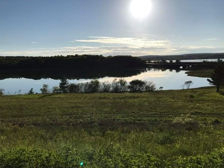 Main Photo: Lot Back road in Joggin Bridge: 401-Digby County Vacant Land for sale (Annapolis Valley)  : MLS®# 202106017