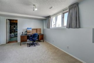 Photo 30: 255 Hawkview Manor Circle NW in Calgary: Hawkwood Detached for sale : MLS®# A1087038