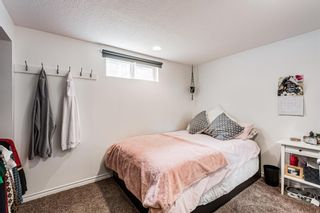 Photo 37: 82 Thornlee Crescent NW in Calgary: Thorncliffe Detached for sale : MLS®# A1146440