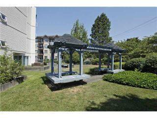 """Photo 18: 207 20277 53 Avenue in Langley: Langley City Condo for sale in """"Metro II"""" : MLS®# F1446990"""