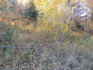 Photo 11: Lot 157-159 Third Avenue South in Kenora: Vacant Land for sale : MLS®# TB202564