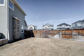 Photo 42: 3 West Pointe Way: Cochrane Detached for sale : MLS®# A1079343