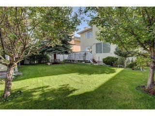 Photo 30: 107 CORAL KEYS Green NE in Calgary: Coral Springs House for sale : MLS®# C4078748