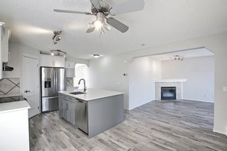 Photo 8: 253 Elgin Way SE in Calgary: McKenzie Towne Detached for sale : MLS®# A1087799