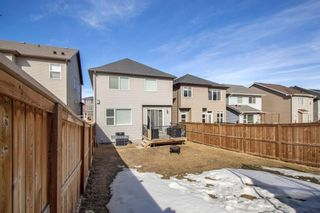 Photo 31: 459 Nolan Hill Drive NW in Calgary: Nolan Hill Detached for sale : MLS®# A1085176