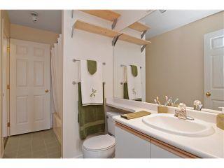Photo 10: 319 295 SCHOOLHOUSE Street in Coquitlam: Maillardville Condo for sale : MLS®# V1028195