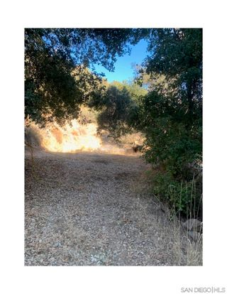 Photo 3: OUT OF AREA Property for sale: 0 Mesa Grande Rd in Santa Ysabel