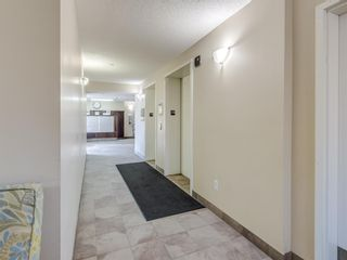 Photo 32: 2113 5200 44 Avenue NE in Calgary: Whitehorn Apartment for sale : MLS®# A1093257