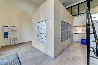 Photo 3: 316 4033 MAY Drive in Richmond: West Cambie Condo for sale : MLS®# R2584148