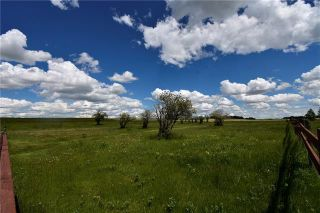 Photo 3: HWY 27 RANGE ROAD 272: Rural Mountain View County Land for sale : MLS®# C4302641