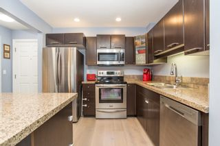 Photo 3: 313 5438 198TH Street in Langley: Langley City Condo for sale : MLS®# R2512995