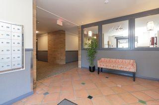 Photo 3: 402 4030 Quadra St in : SE High Quadra Condo for sale (Saanich East)  : MLS®# 884896
