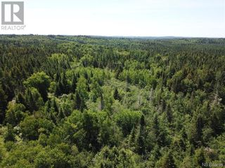 Photo 15: 100 Mount Pleasant Road in St. George: Vacant Land for sale : MLS®# NB059440