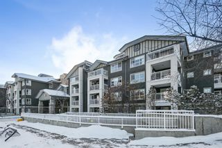 Photo 18: 111 35 Richard Court SW in Calgary: Lincoln Park Apartment for sale : MLS®# A1068844