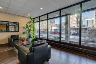 Photo 31: 514 339 13 Avenue SW in Calgary: Beltline Apartment for sale : MLS®# A1052942