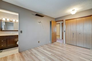 Photo 17: 7719 67 Avenue NW in Calgary: Silver Springs Detached for sale : MLS®# A1013847