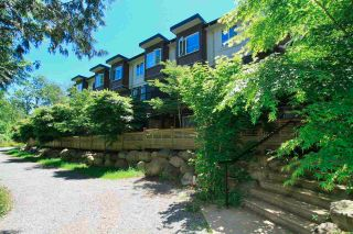 Photo 31: 65 5888 144 STREET in Surrey: Sullivan Station Townhouse for sale : MLS®# R2589743