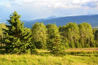 """Photo 17: DECEPTION LAKE FOREST SERVICE ROAD: Telkwa Land for sale in """"WOODMERE"""" (Smithers And Area (Zone 54))  : MLS®# R2398092"""