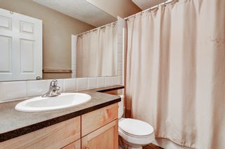 Photo 19: 101 Copperfield Gardens SE in Calgary: House for sale : MLS®# C4019487