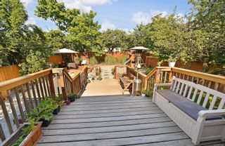 Photo 15: 3109 Yew St in : Vi Mayfair House for sale (Victoria)  : MLS®# 877948