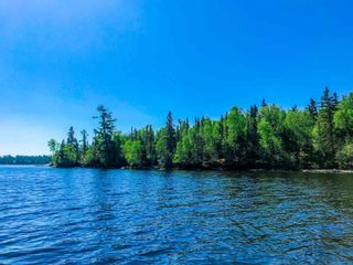 Photo 5: 5 Pulford's Island in Kenora: Vacant Land for sale : MLS®# TB210666
