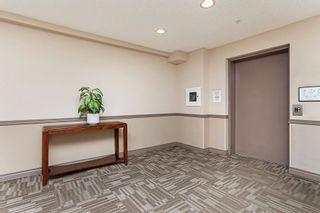 Photo 6: 215 279 SUDER GREENS Drive in Edmonton: Zone 58 Condo for sale : MLS®# E4250469