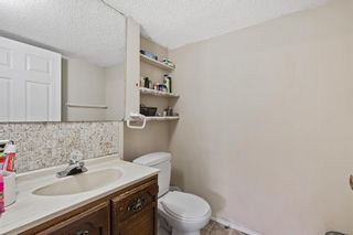 Photo 31: 4772 Rundlehorn Drive NE in Calgary: Rundle Detached for sale : MLS®# A1144252