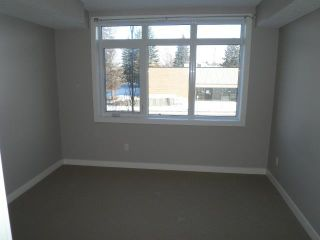 Photo 16: 102 2419 CENTRE Street NW in CALGARY: Tuxedo Condo for sale (Calgary)  : MLS®# C3515174