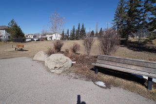 Photo 42: 117 Coverdale Road NE in Calgary: Coventry Hills Detached for sale : MLS®# A1075878