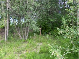 Photo 4: 30 Walsh Road in Blind Bay: SHUSWAP LAKE ESTATES Vacant Land for sale : MLS®# 10235083