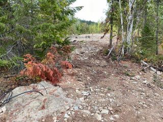 Photo 10: 292 Terry Road, in Enderby: Vacant Land for sale : MLS®# 10239679