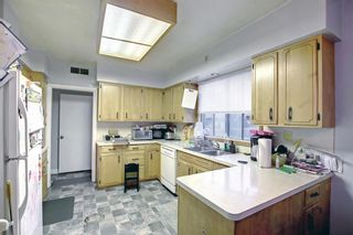 Photo 16: 456 18 Avenue NE in Calgary: Winston Heights/Mountview Detached for sale : MLS®# A1153811