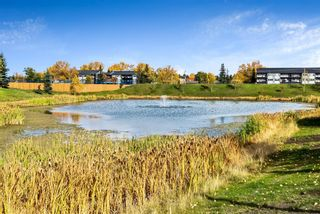 Photo 25: 7410 304 Mackenzie Way SW: Airdrie Apartment for sale : MLS®# A1149163