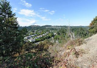 Photo 3: 4732 Treetop Hts in VICTORIA: SE Cordova Bay Land for sale (Saanich East)  : MLS®# 770118