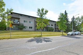 Photo 19: 306 280 Banister Drive: Okotoks Apartment for sale : MLS®# A1142558