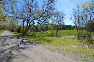 Photo 10: Vac Lot Bailey Drive in Cramahe: Colborne Property for sale : MLS®# X5225204