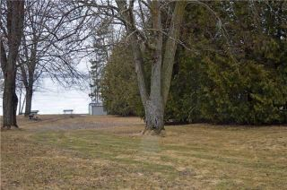 Photo 7: 99 Campbell Beach Road in Kawartha Lakes: Rural Carden Property for sale : MLS®# X4081023
