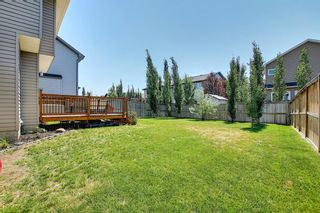 Photo 35: 317 Ranch Close: Strathmore Detached for sale : MLS®# A1128791