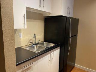 Photo 17: 306 3235 Quadra St in Saanich: SE Maplewood Condo for sale (Saanich East)  : MLS®# 867553