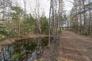 Photo 31: 699 Forest Glade Road in Forest Glade: 400-Annapolis County Residential for sale (Annapolis Valley)  : MLS®# 202110307