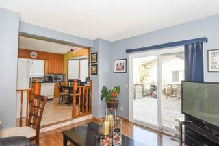 Photo 27: 1244 Berkley Drive NW in Calgary: Beddington Heights Detached for sale : MLS®# A1118414