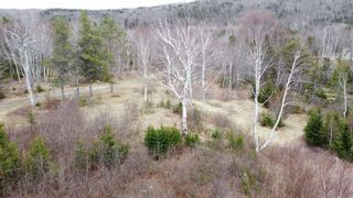 Photo 8: Lot 1&2 East Bay Highway in Big Pond: 207-C. B. County Vacant Land for sale (Cape Breton)  : MLS®# 202108705