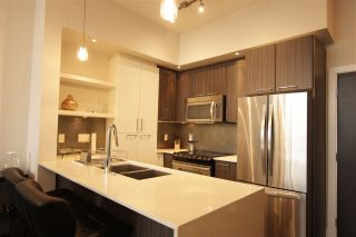 Photo 3: c403- 20211 66 Ave in Langley: Willoughby Heights Condo for sale : MLS®# R2356375