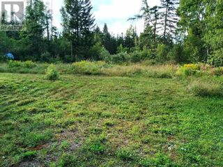 Photo 5: 555 Queens RD in Sackville: Vacant Land for sale : MLS®# M133180