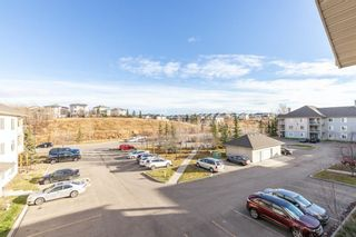 Photo 28: 306 2000 Citadel Meadow Point NW in Calgary: Citadel Apartment for sale : MLS®# A1055011