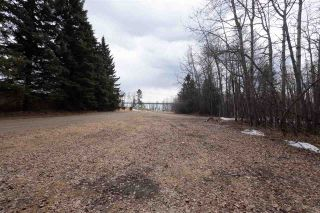 Photo 19: 5040 47436 RGE RD 15: Rural Leduc County Cottage for sale : MLS®# E4235410
