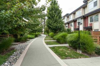 """Photo 15: 64 19477 72A Avenue in Surrey: Clayton Townhouse for sale in """"Sun at 72"""" (Cloverdale)  : MLS®# R2386075"""